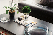 An orchid and a boxwood ball atop a coffee table with a built-in fire pit