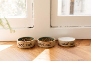 A set of three pet food bowls with cat food and water.