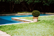 A potted boxwood beside an L-shaped pool