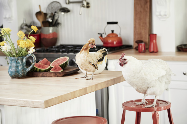 Rustic Kitchen Photos (5 of 63) []