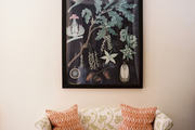 A botanical print and framed butterflies above a patterned settee