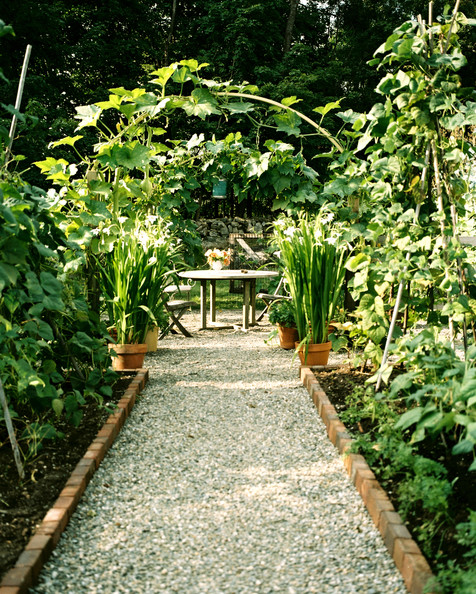 Garden and landscape designs on pinterest tropical for Gravel garden designs