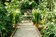 A gravel pathway leading to a table and chairs in a garden