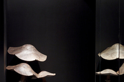 Overscale wooden mushrooms in a dark corner