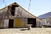 An old barn with a string of festoon lights.