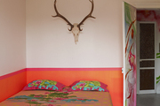 Antlers and a skull above a colorful bed