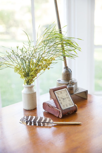 Little Potted Plant Photos (1 of 1)
