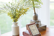 Small plant and vintage decor atop wooden table.