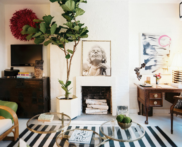 Every Fiddle Leaf Fig Tree from the Lonny Archives