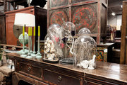 Cloches filled with organic elements at Green Square Antiques, in Copenhagen