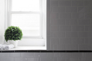 A topiary on a window sill in a tiled shower