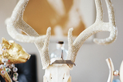 A deer skull with crystal-studded antlers on a wooden desk