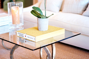 A glass coffee table with a brass ram's-head base