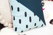 Graphic pillows rest on a hide.