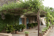 A landscaped pergola punctuated by planters