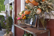 A seasonal vignette at Botany Flowers