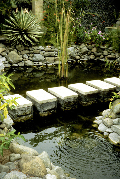 Stepping Stones Photos (5 of 16) []