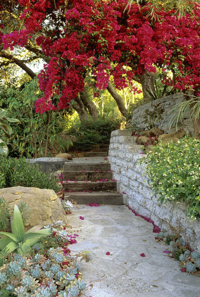 Contemporary Landscaping Photos (45 of 52) []