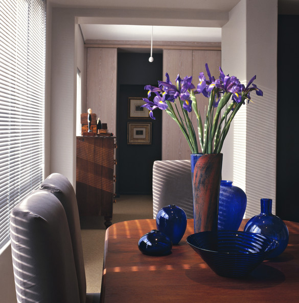 Contemporary Dining Room Photos (282 of 397)
