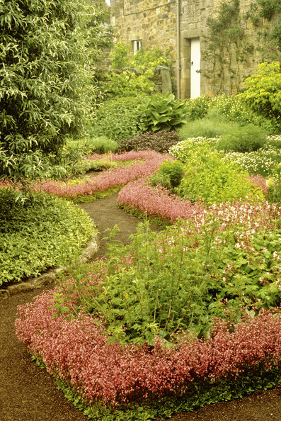 Pink Landscaping Photos (6 of 7)