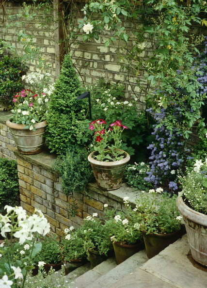 garden details green country garden keywords walled basement garden