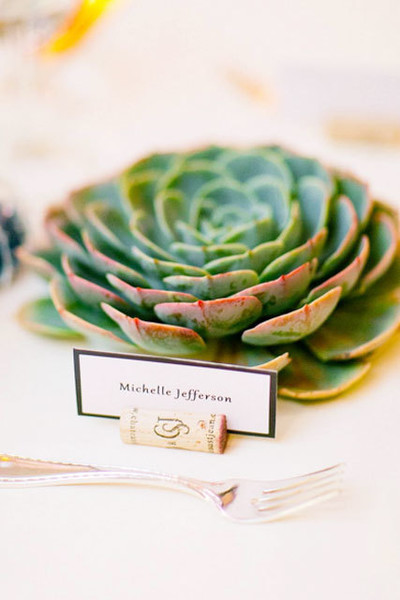 Seating Succulents