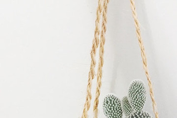 DIY To Try: Pretty Plant Hanger