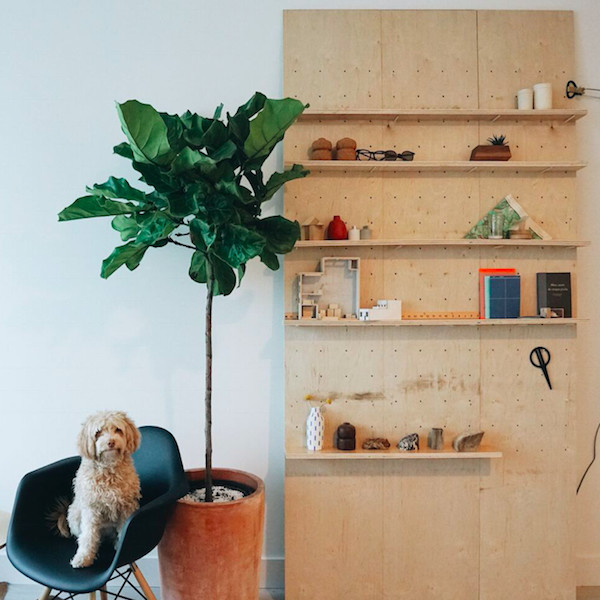 Plywood Is A Trend We Cannot Resist