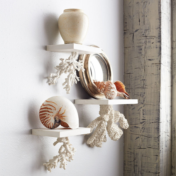 Floating Coral Shelf