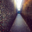 Insta: Bubblegum Alley