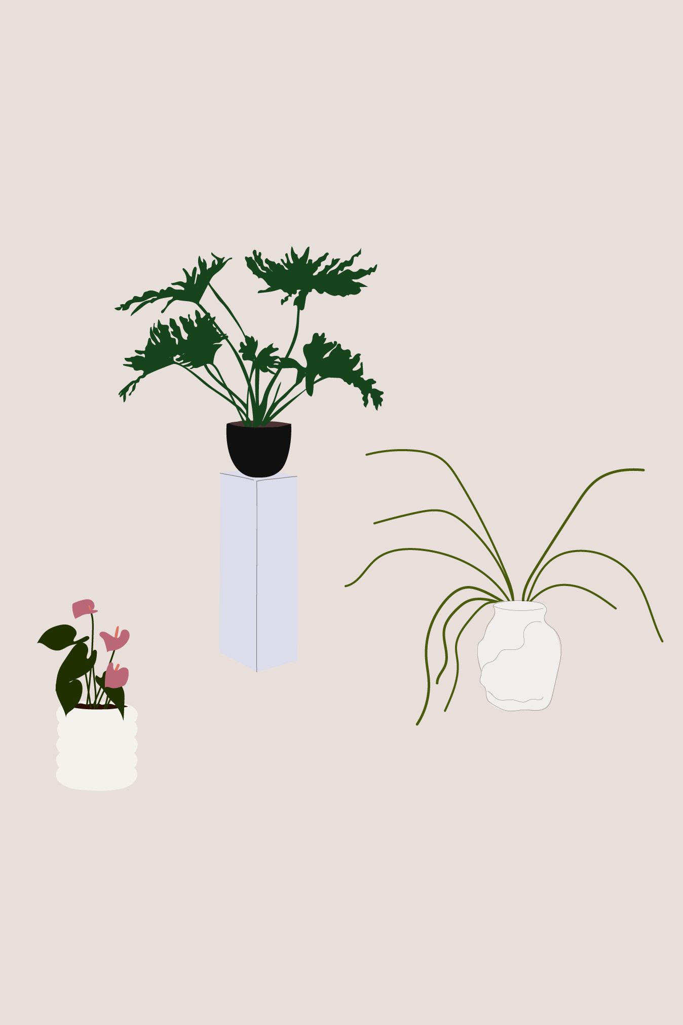 The Science Behind Why Houseplants Are Good For You