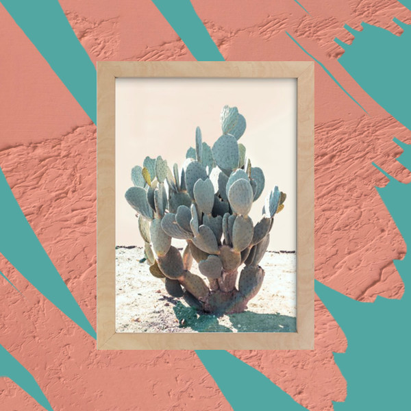 25 Desert Decor Items To Give Your Home A Summertime Feel