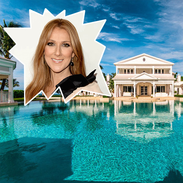 Celine Dion's Florida Water Park Mansion