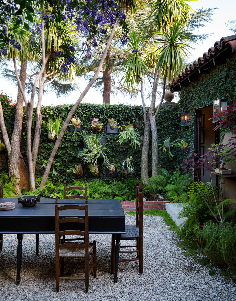 What dreams are made of: Duncan's lushly composed courtyard, complete with a wall of greenery punctuated by staghorn ferns.