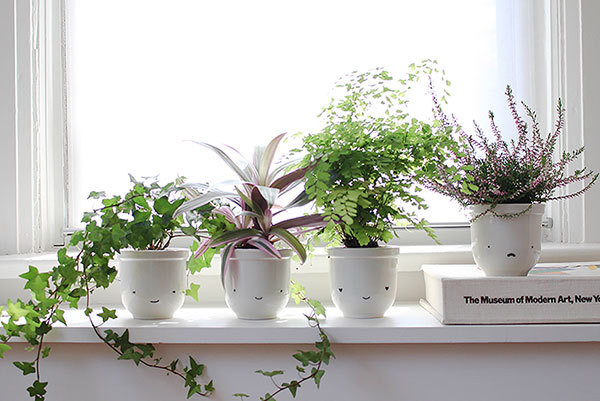 An Easy Kid-Friendly DIY Project with Potted Plants