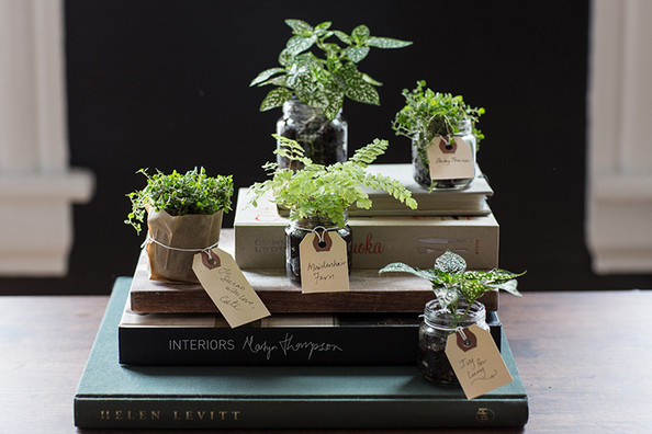 Diy Kids Projects Baby Food Jar Planters And Terrariums Family Living 2014 Lonny