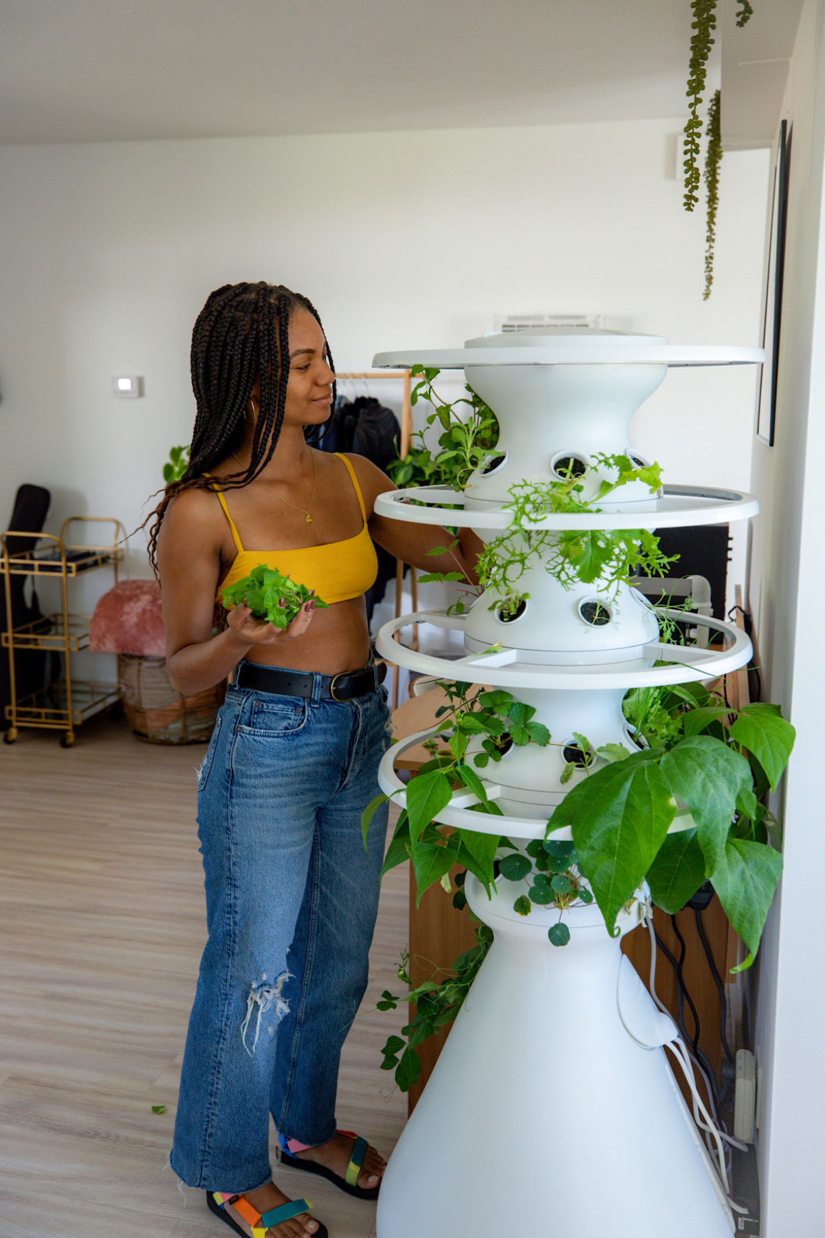 """""""Hydroponics, or farming in this way, is a really great way to fight against food insecurity,"""" Thomas shares.Lettuce Grow Hydroponic Garden. Photographed by Cher Martinez for Lonny."""