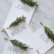 Evergreen Place Cards