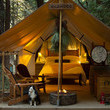 Glamping Out