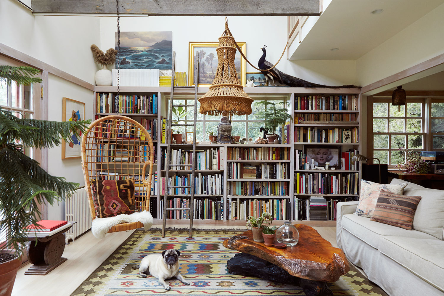 The couple's dog, Ali Baba, sprawls on a vintage rug in the book-lined living room.