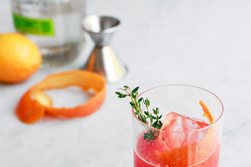 A Winter Cocktail for Gin and Tonic Lovers