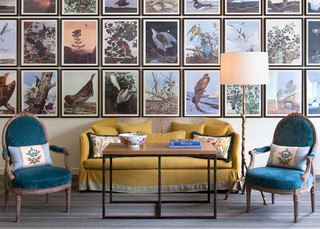 How to Decorate with Vintage Audubon Bird Prints