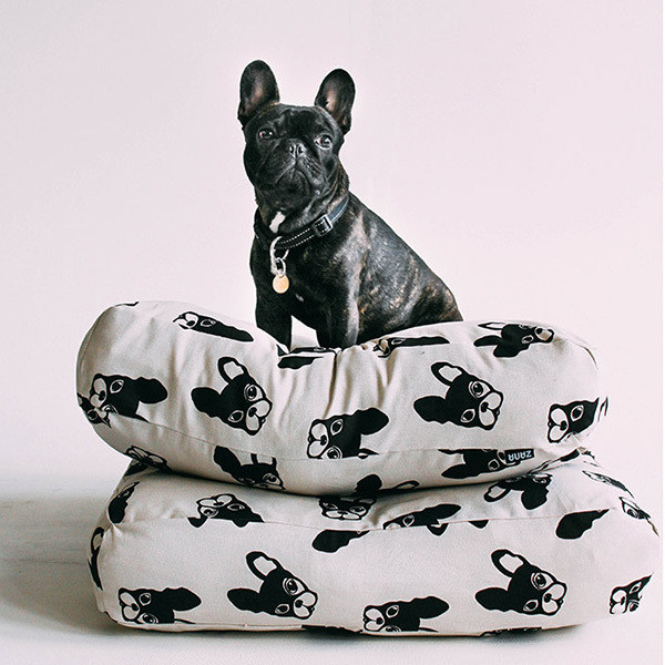 Frenchie Find