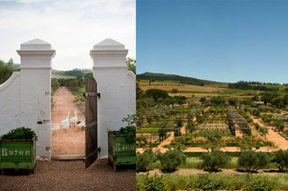 Wish We Were Here: Babylonstoren