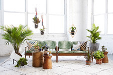 How To Make Your Indoor Space Feel More Outdoorsy