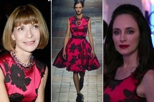 Seeing Double: 'Revenge' Star Madeleine Stowe and Anna Wintour Wore the Same Dress