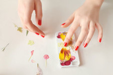 The Prettiest Pressed Flower DIYs to Try This Spring